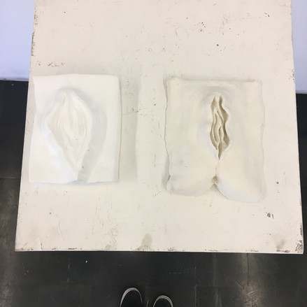 Clay and Plaster Vaginas
