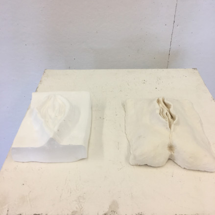 Plaster and Clay Vaginas