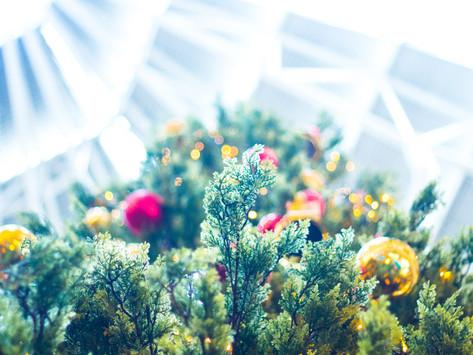 """""""La brisita"""" nos recuerda que llegó la Navidad, cuidemos de ella."""