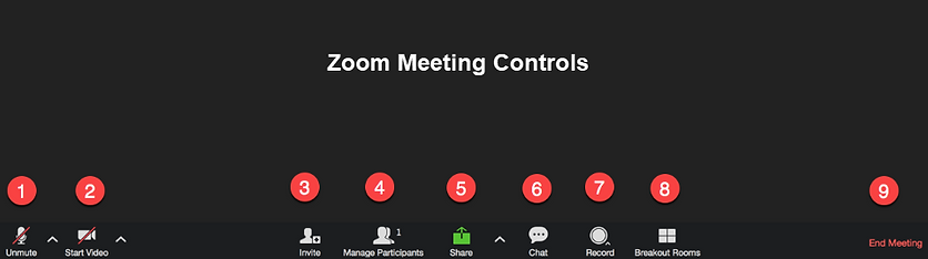 zoom meeting controls complete.png