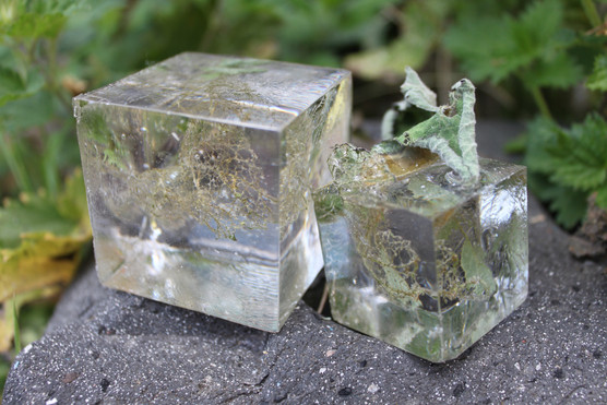 'Hold yourself still: Cubes'