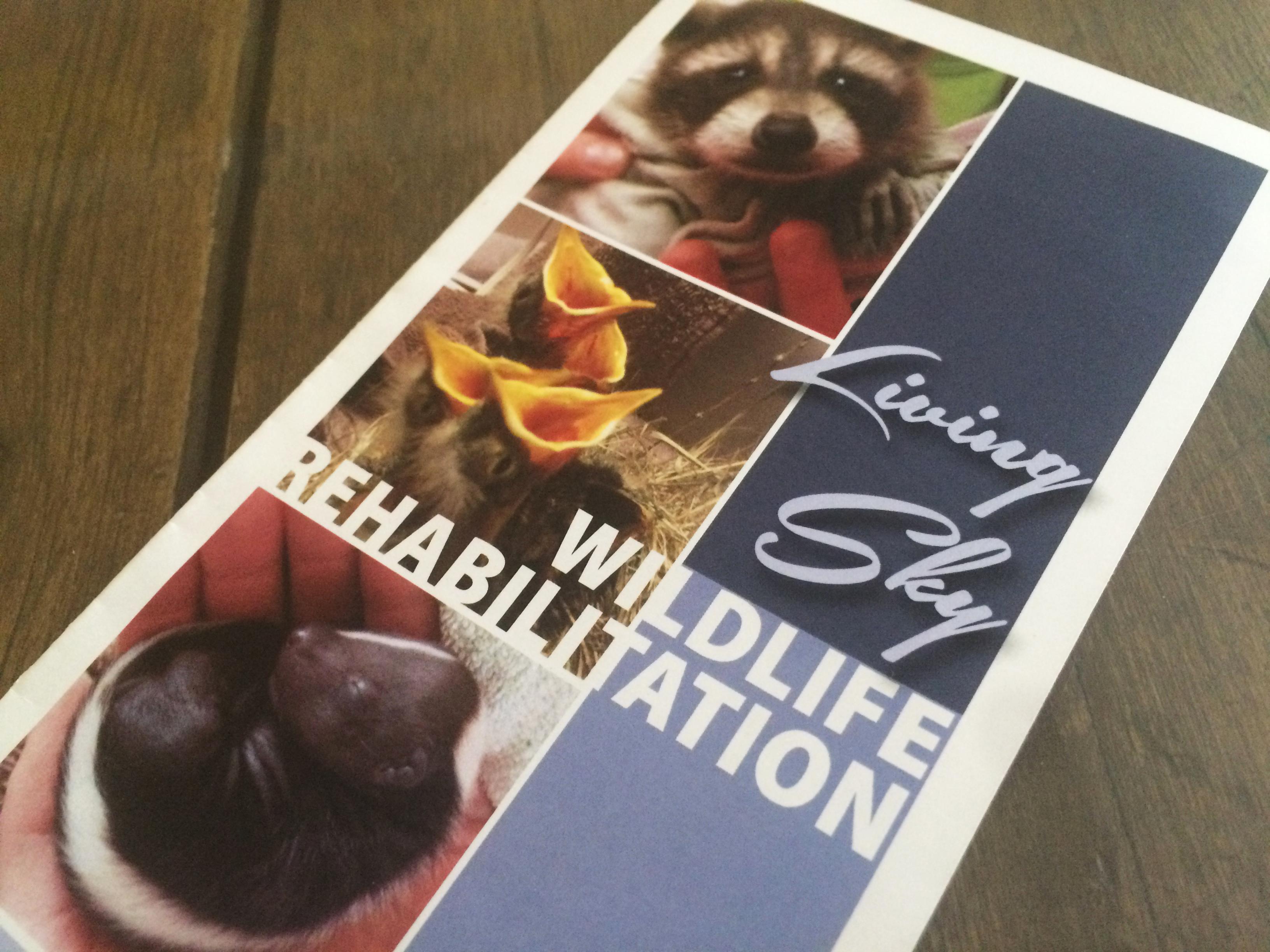 Living Sky Wildlife Rehabilitation 1