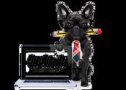 Design Pup.png