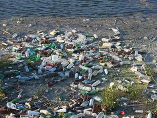 ¿Tienes idea de cuántos desechos generamos diariamente?