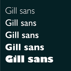 Fiona McGee Typebook Gill Sans!