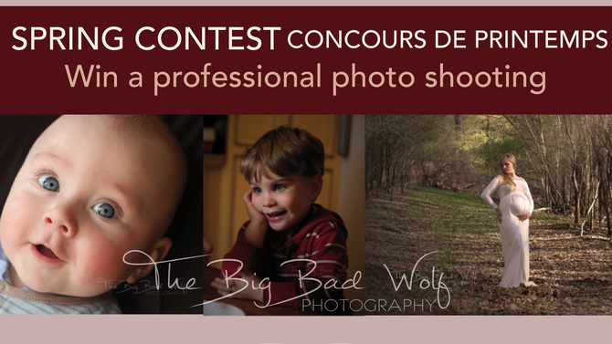 Spring contest / Concours de printemps