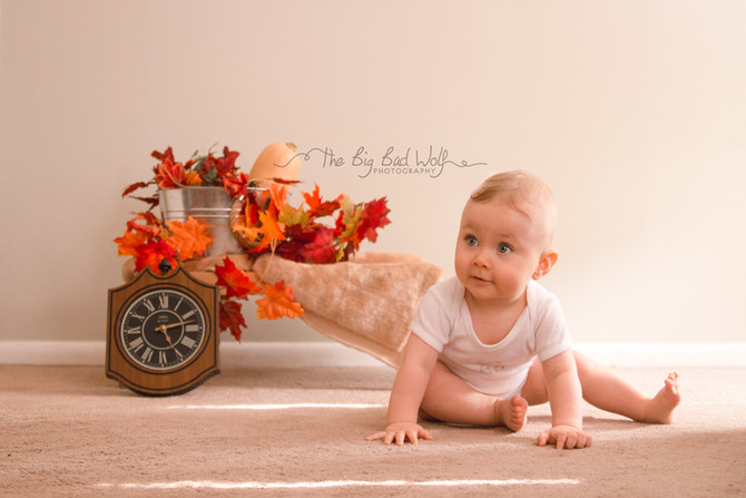 Special Fall and Christmas Mini Session Offer