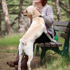 Auch auf dem schönsten Spaziergang braucht Hund eine Pause und ehrlich gestreichelt zu werden ist doch super!