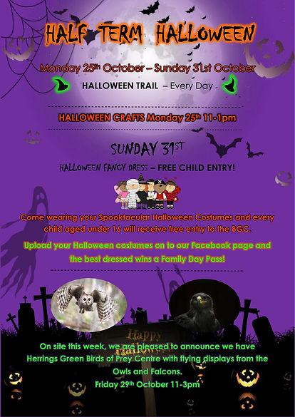 Halloween 2021 new poster (1) (002).jpg