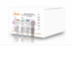 Coronavirus,tests Rápidos coronavirus, PCR coronavirus, kit de pcr coronavirus