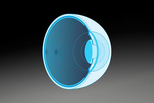 img-retinal.png