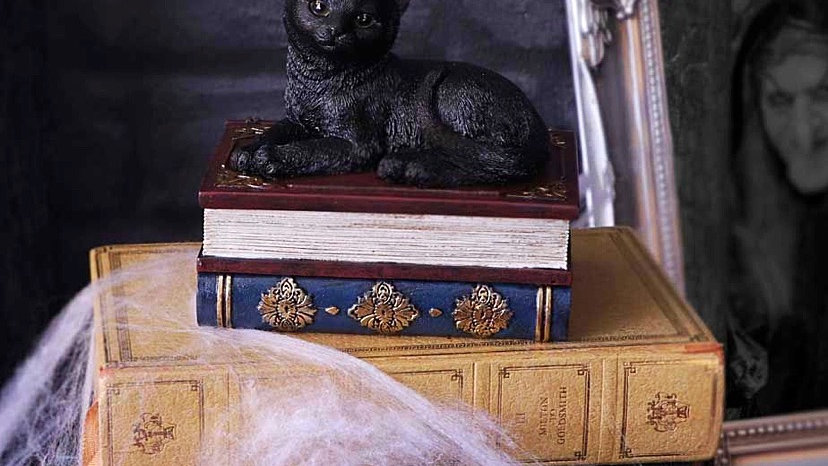 Salems Spells Witches Familiar Black Cat and Spellbook Box