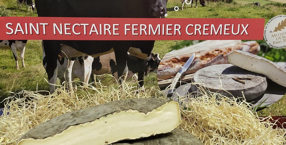 Saint Nectaire fermier AOP (pièce)