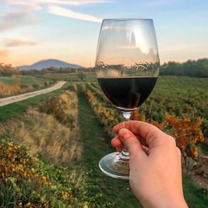 WINE & TRAVEL: Southern Rhône