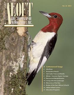 Aloft-2015-cover