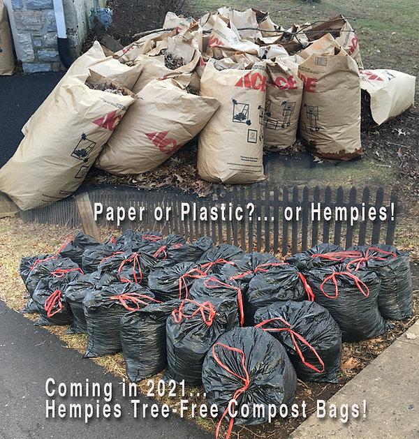 Paper or Plastic21.jpg