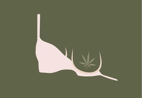 Can I Use CBD While Breastfeeding?