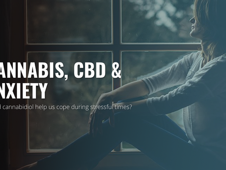 CBD for Anxiety? Yes.