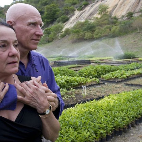 Photographer And His Wife Plant 2 Million Trees In 20 Years To Restore A Destroyed Forest