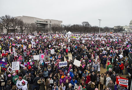 A picture of the women's march on Washington DC and a discussion on how effective it is on policy and influencing Congress
