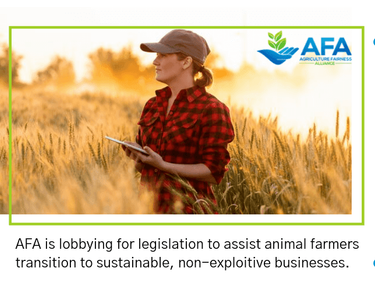 Ending Subsidies to Animal Agriculture