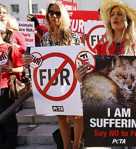 Activists stand outside courthouse to advocate for animal right and banning animal fur from production