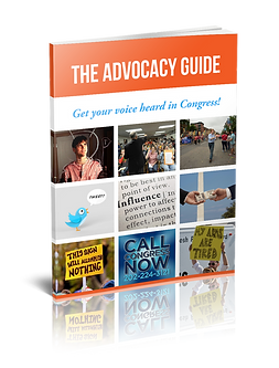 The Advocacy Guide that explains the 5 principles of Advocacy, the different types of Advocacy, the purpose of Advocacy.