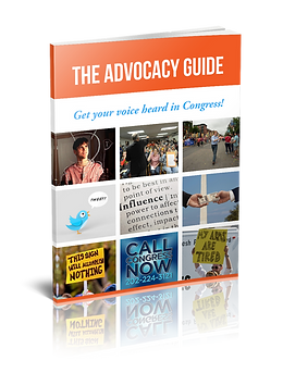 A book about lobbying and how constituents can get their voice heard in Congress