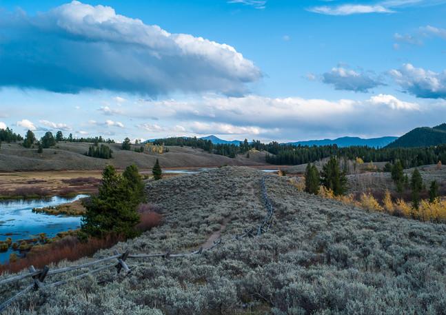 Teton Meadow 2