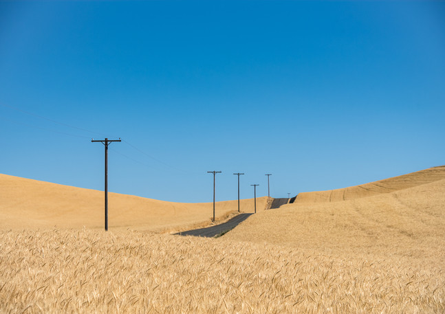 The Wheat Road