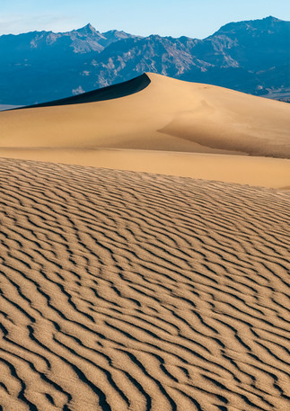 Dune Abstract 4