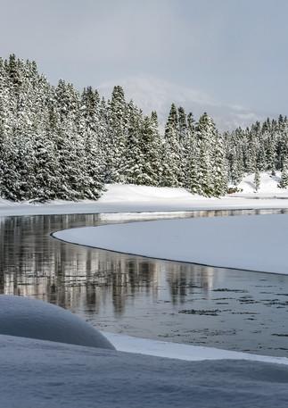 Madison River Reflection