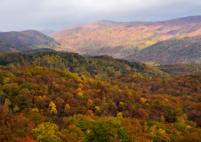 Fall Color in the Smokies