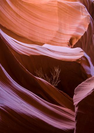 Antelope Canyon 9
