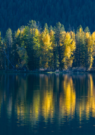 Fall Reflections 3