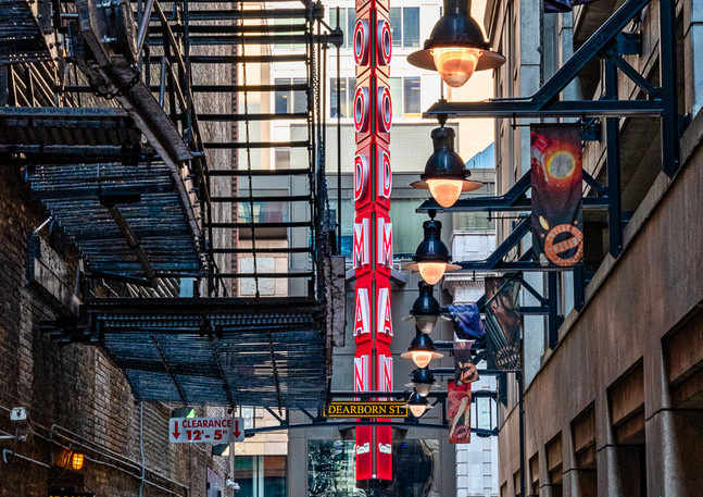 Goodman Theater - Alley View