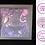 Thumbnail: €5.50 - Ursula  - 3D Paper Cut Template Light Box SV