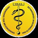 Logo VBAG.png