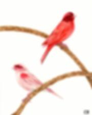 red birdsedited.png