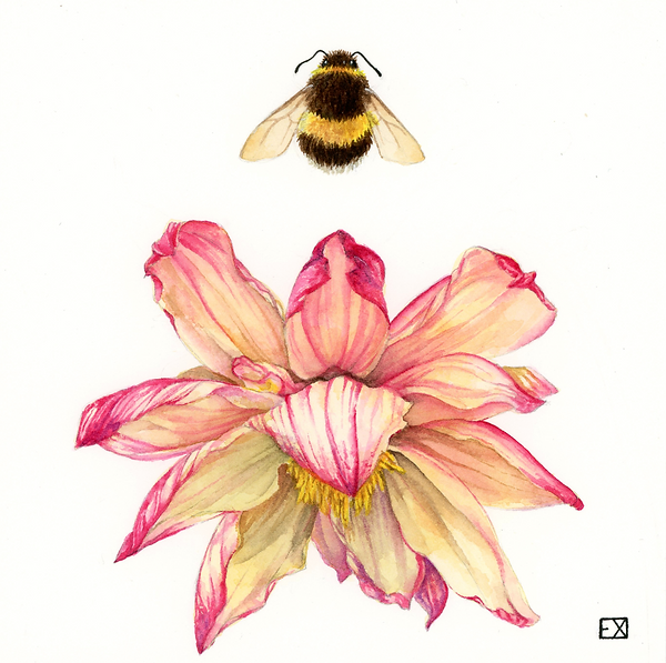 bee flower2.png