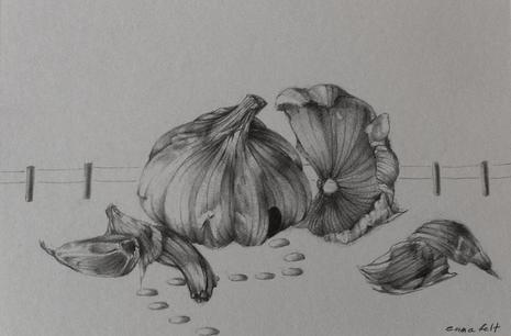 Garlic House 2