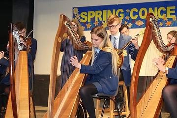 harps2.jpg
