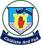 Beech Hill College Logo