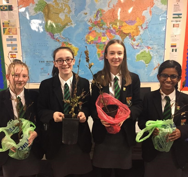 National Tree Week was first initiated in 1975 and is the UK's largest tree celebration, annually launching the start of the winter tree planting season. To promote this Eco-club ran a quiz with small beech trees and wildlife goodies on offer as prizes.