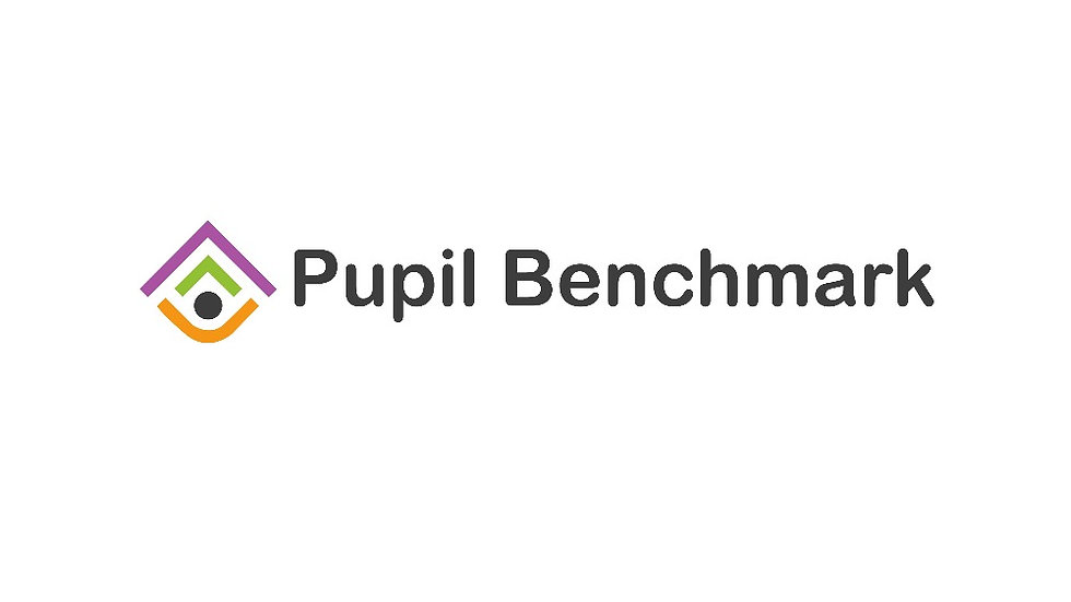 Pupil Benchmark - One Year Subscription