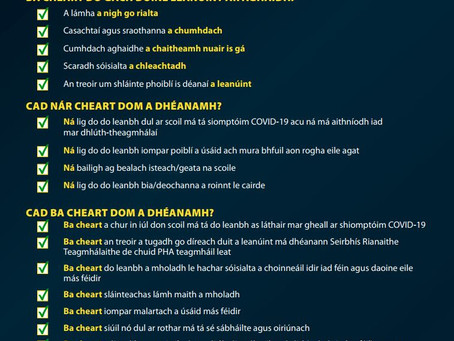 Tuismitheoirí - Annex D Dos and Don'ts Poster