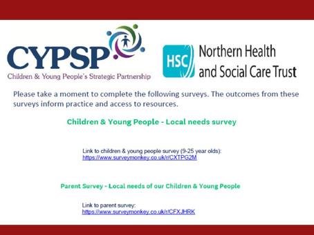 CYPSP Survey