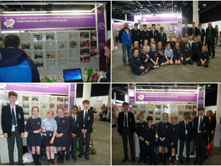 Year 10's Mentor Young Scientists