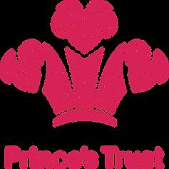 Princes trust.png