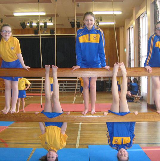 PE Year 8 Gymnastics.JPG